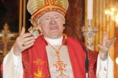 Cardinal Antonelli (7)